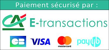 Paiement sécurisé e-transactions